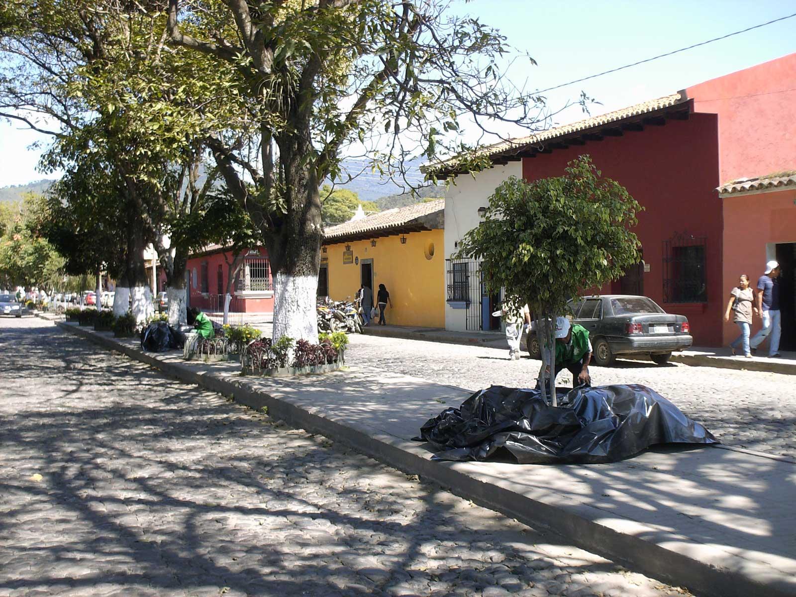 Proyecto de Jardinización de la Alameda Santa Lucia - La Antigua